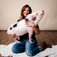 Little Pig and Her Mama
